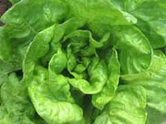 comer verde